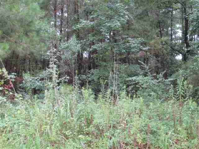 Acreage for Sale at Hwy 90 @ Hwy 22 Hwy 90 @ Hwy 22 Longs, South Carolina 29568 United States