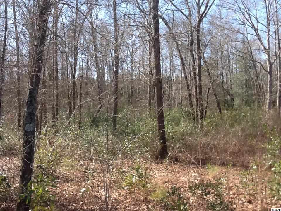 Land for Sale at 1016 Merritt Road 1016 Merritt Road Conway, South Carolina 29526 United States