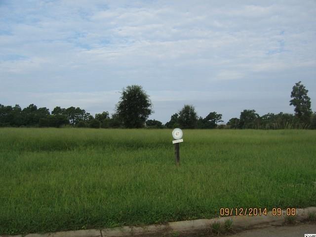 土地,用地 为 出租 在 Lot 47 Cravens Grant Lot 47 Cravens Grant Georgetown, South Carolina 29440 United States