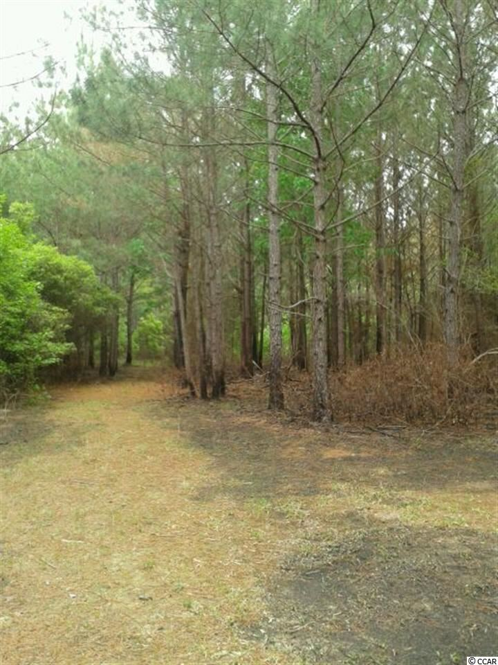 TBD McGirt Swamp Road, Kingstree, SC 29556