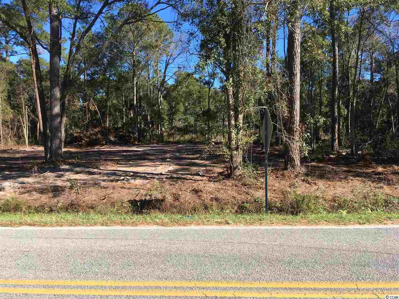 Acreage for Sale at PETIGRU DRIVE PETIGRU DRIVE Pawleys Island, South Carolina 29585 United States