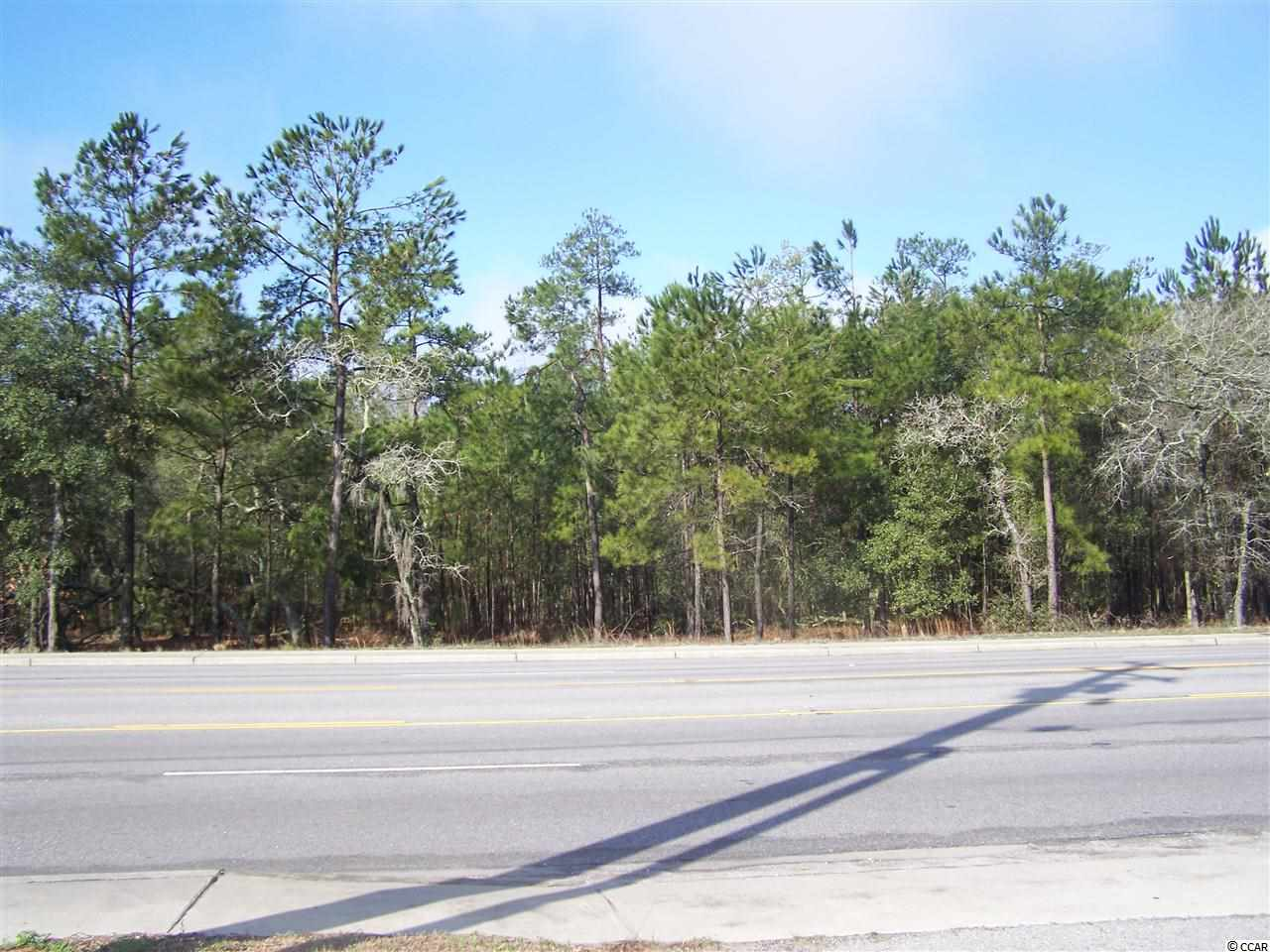 Multi Family for Sale at Hwy 544 Hwy 544 Conway, South Carolina 29526 United States