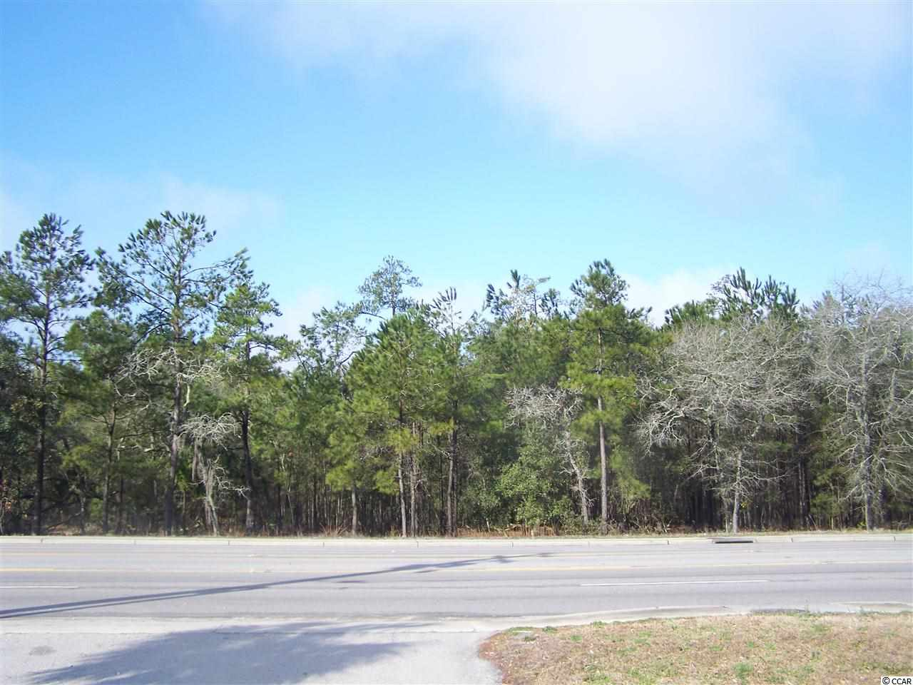 Additional photo for property listing at Hwy 544 Hwy 544 Conway, South Carolina 29526 United States