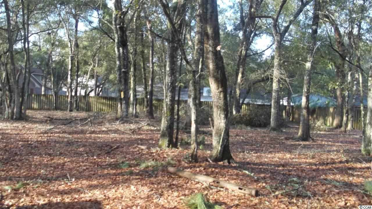 Additional photo for property listing at Lot 30 Mt. Gilead Place Drive Lot 30 Mt. Gilead Place Drive Murrells Inlet, South Carolina 29576 United States
