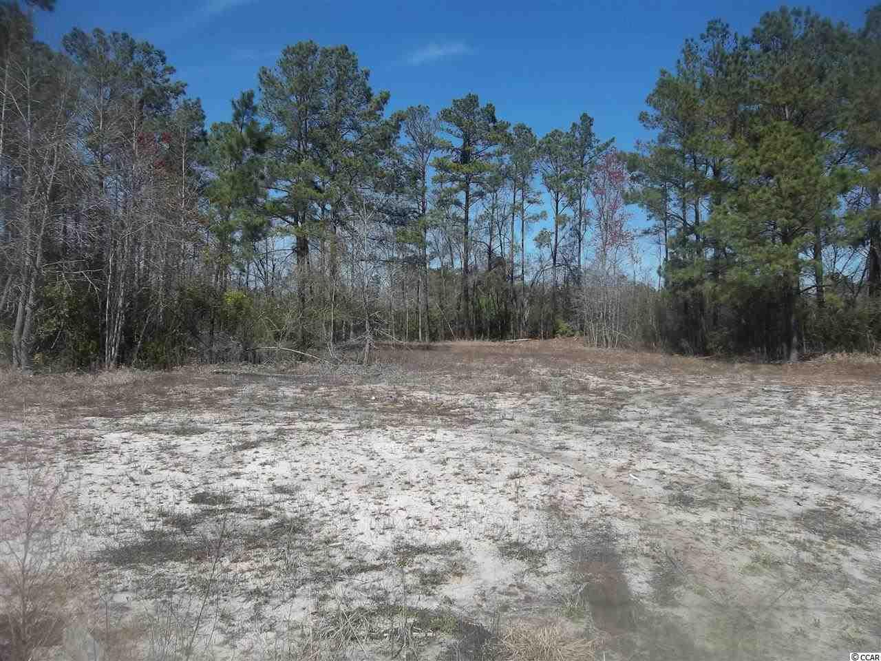 Savannah Bluff Rd, Conway, SC 29526