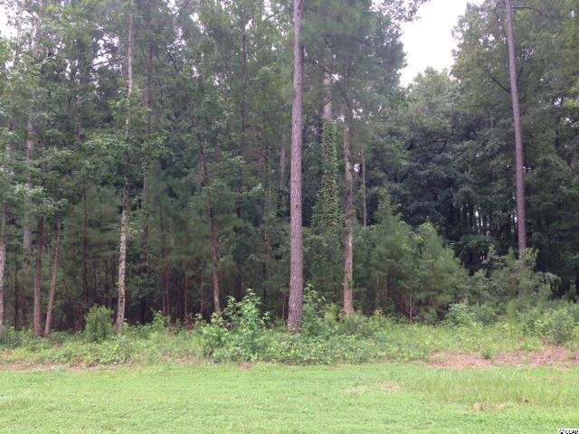 Land for Sale at Lot 41 Black Water Cove Lot 41 Black Water Cove Conway, South Carolina 29526 United States
