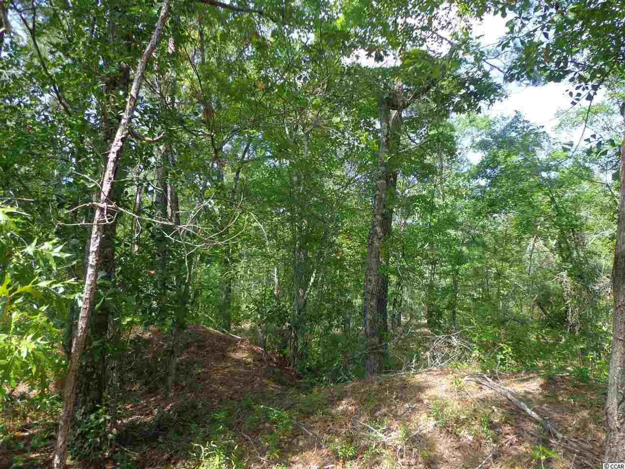 Acreage for Sale at TBD Dirt Road W 905 TBD Dirt Road W 905 Conway, South Carolina 29526 United States