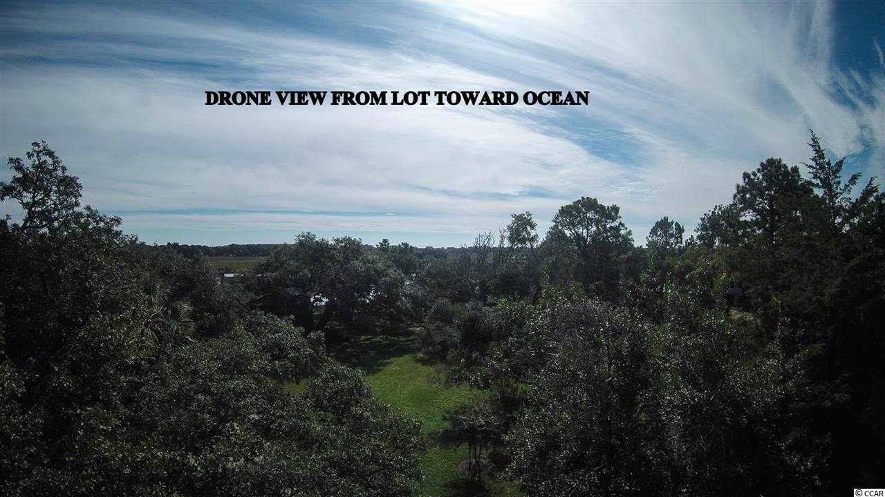 Land for Sale at TBD Hook De TBD Hook De Pawleys Island, South Carolina 29585 United States