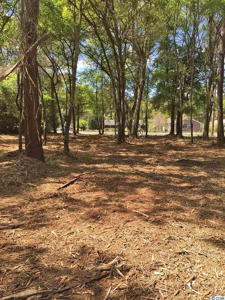 Additional photo for property listing at Lot 7B Brown Pelican Loop Lot 7B Brown Pelican Loop Pawleys Island, Carolina Del Sur 29585 Estados Unidos