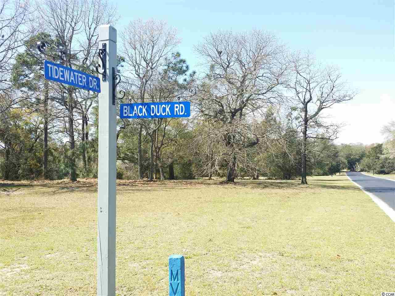 Land for Sale at Lot 51 Black Duck Road Lot 51 Black Duck Road Pawleys Island, South Carolina 29585 United States