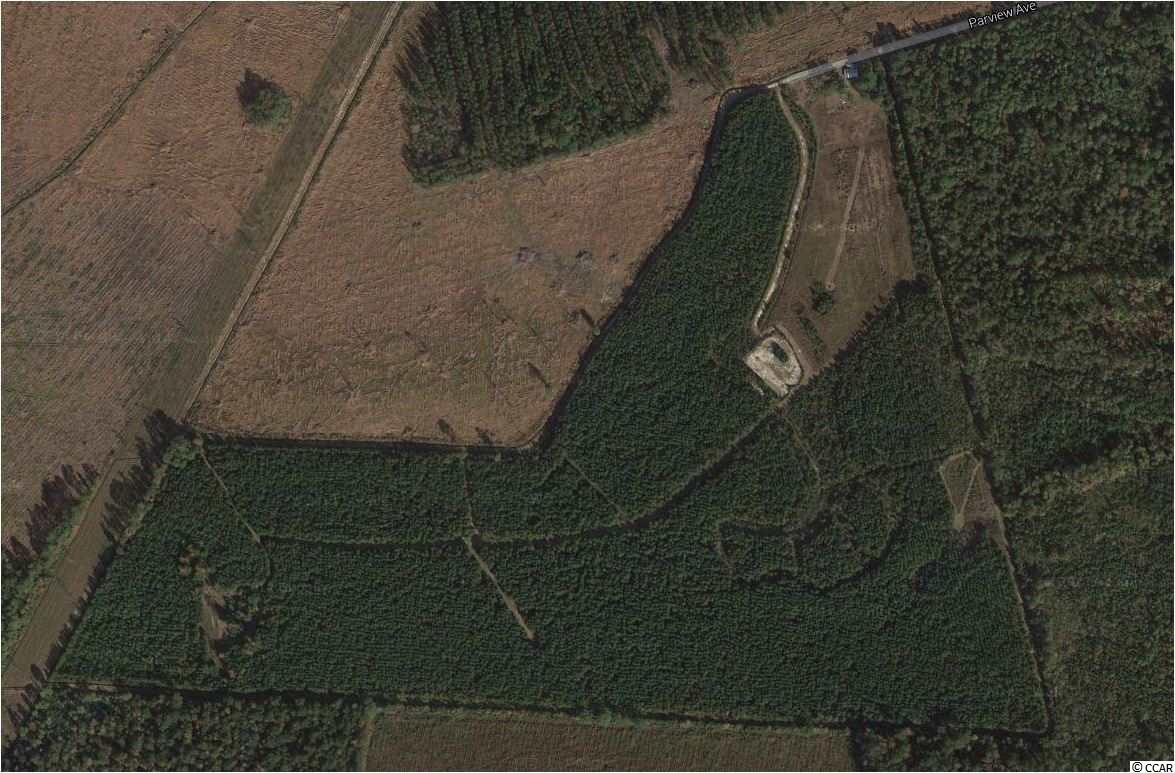 Additional photo for property listing at 87.79 Acres on Parview Avenue 87.79 Acres on Parview Avenue Georgetown, South Carolina 29440 United States