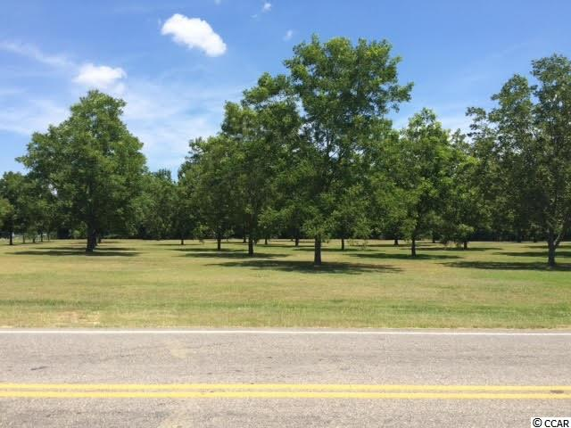 Additional photo for property listing at 6.0 acres Hwy 701 S 6.0 acres Hwy 701 S Conway, South Carolina 29527 United States