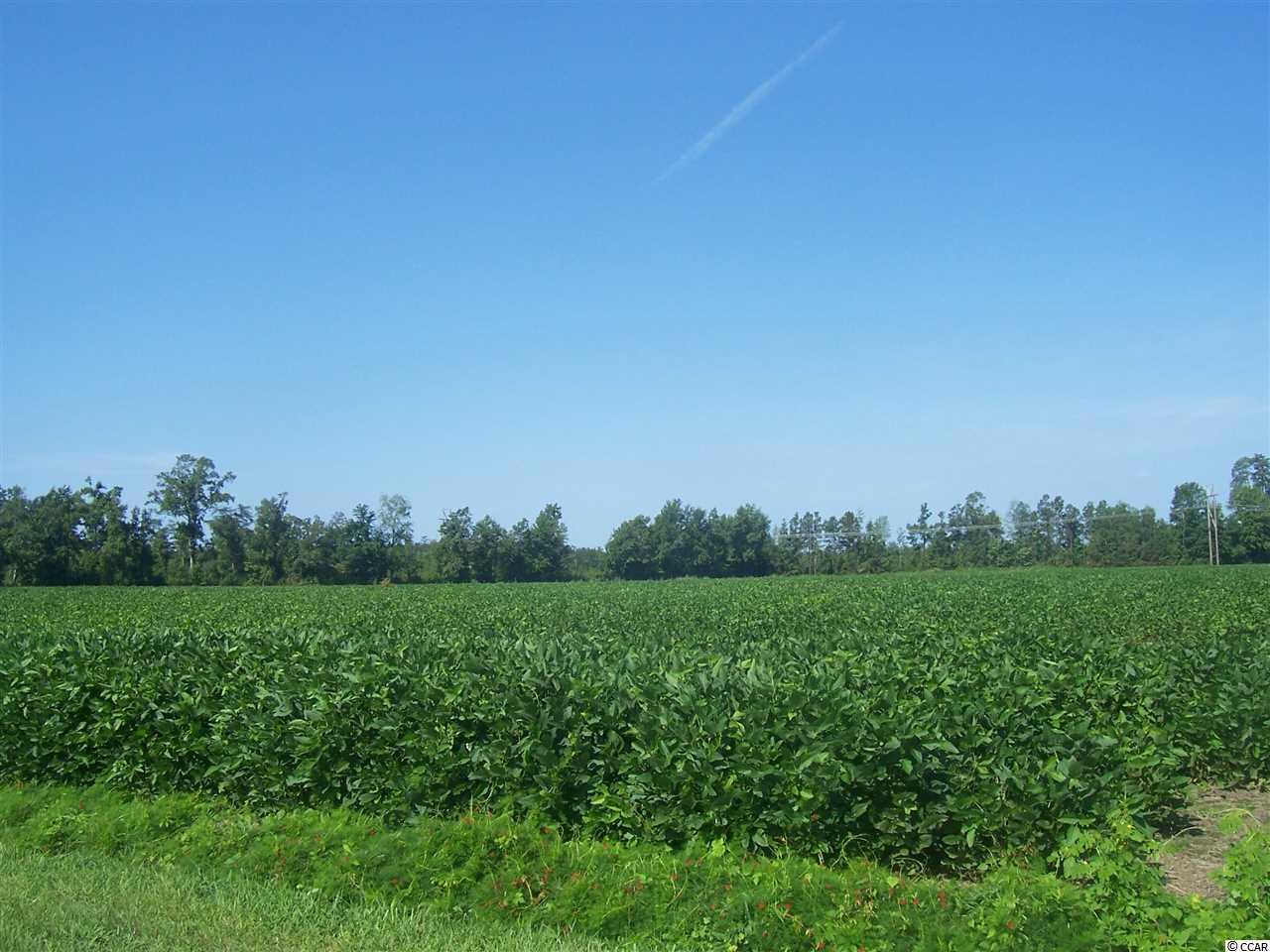 Farm for Sale at tbd Mckinley Short-Cut Road tbd Mckinley Short-Cut Road Conway, South Carolina 29526 United States