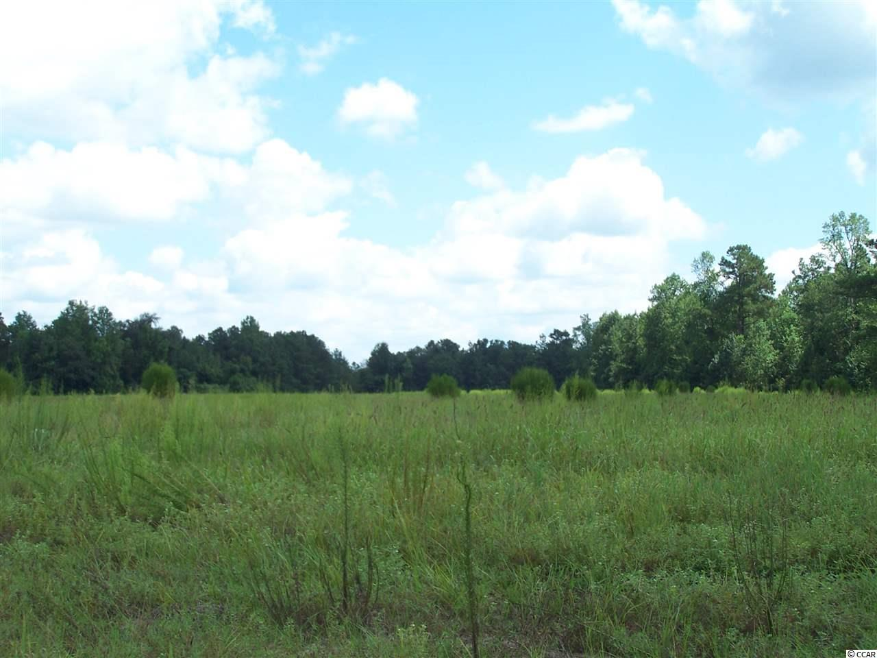 Acreage for Sale at TBD HIGHWAY 348 TBD HIGHWAY 348 Loris, South Carolina 29569 United States
