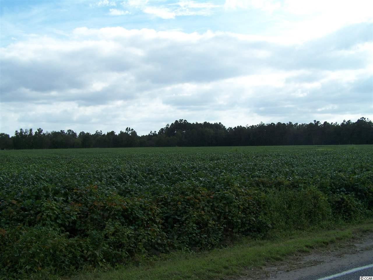 Farm for Sale at TBD HIGHWAY 366 TBD HIGHWAY 366 Conway, South Carolina 29526 United States