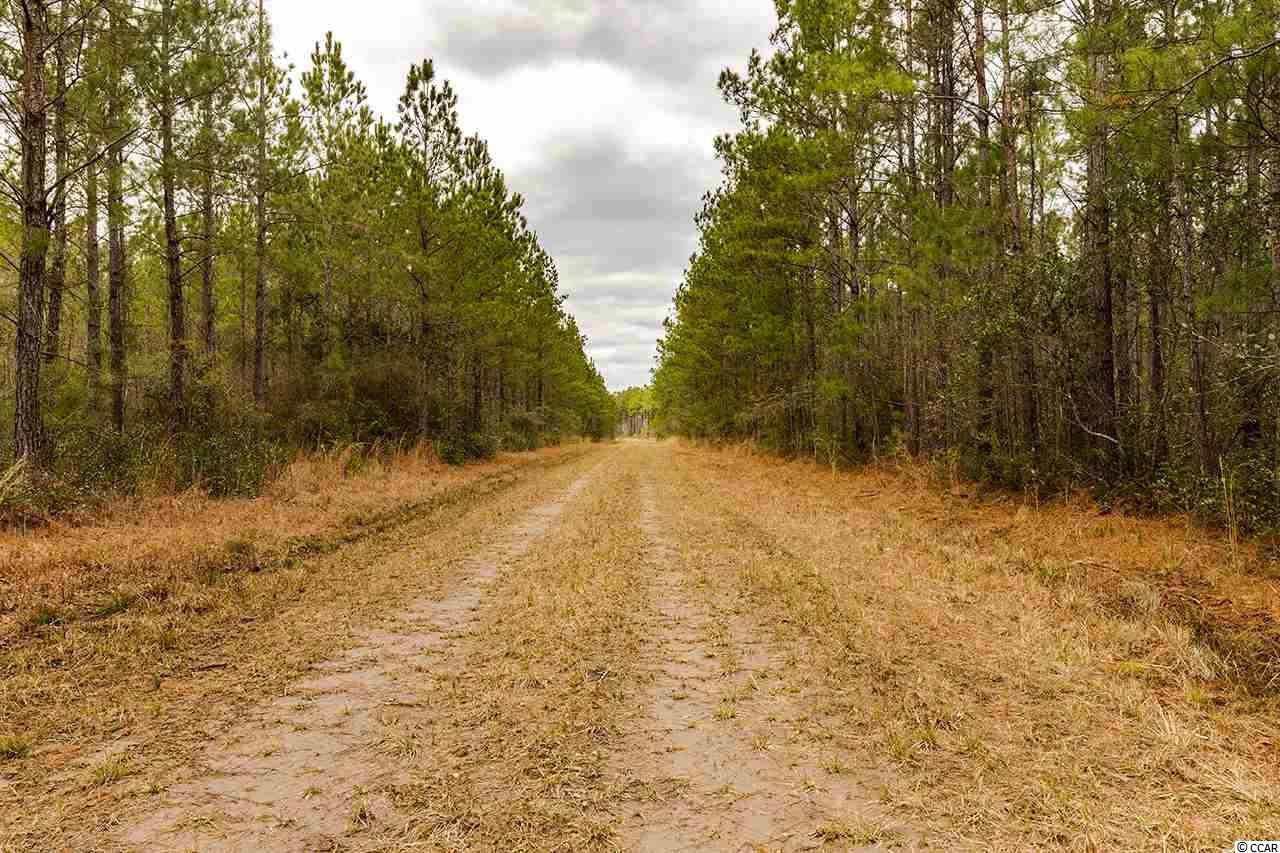 Land for Sale at Plantersville Road Georgetown, South Carolina United States