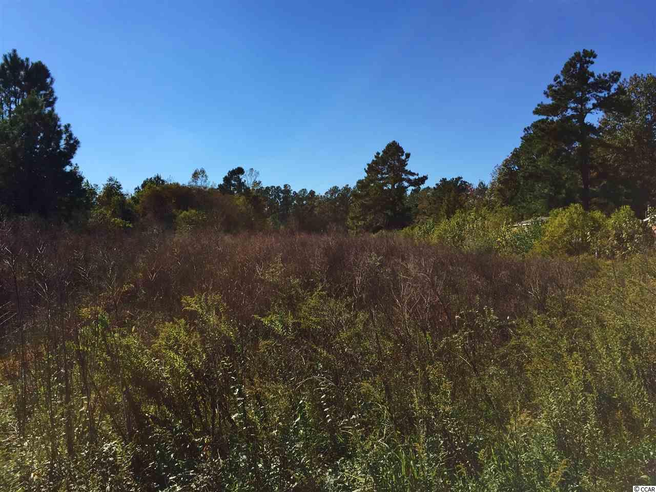 Acreage for Sale at Tract 2 W Hwy 31 Loris, South Carolina 29569 United States