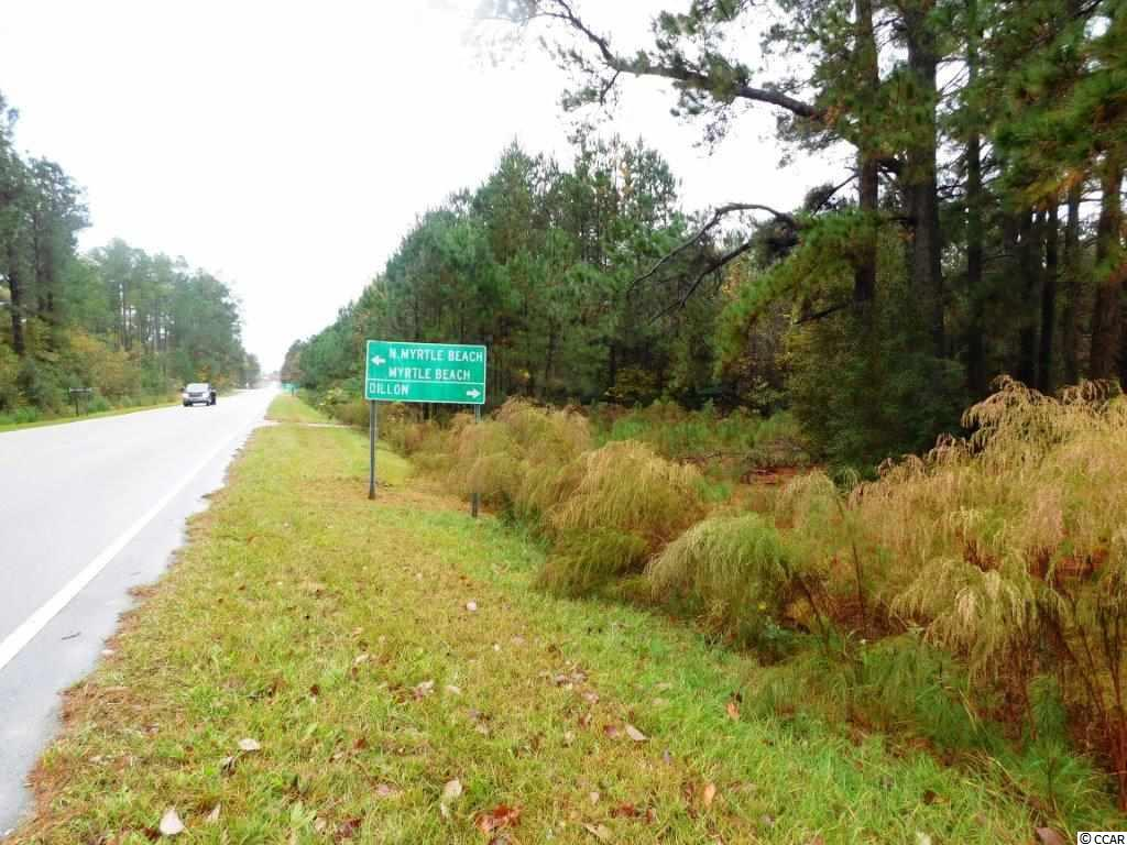 Farm for Sale at TBD Highway 9 & Highway 410 TBD Highway 9 & Highway 410 Green Sea, South Carolina 29545 United States
