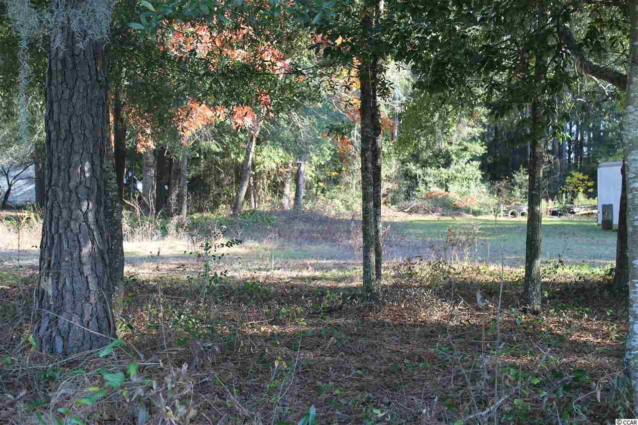 Lot 1 N Hwy 17 Bus, Murrells Inlet, SC 29576