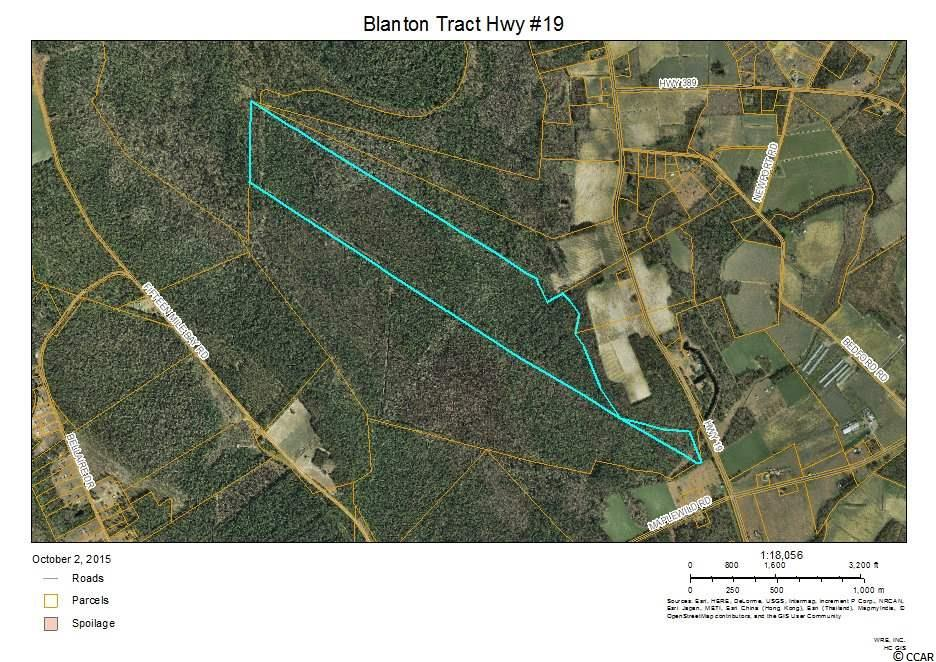 Acreage for Sale at NW Off Of SC Hwy 19 NW Off Of SC Hwy 19 Nichols, South Carolina 29581 United States