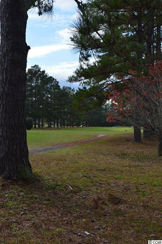 Land for Sale at lot 86/87 S Pineland Drive lot 86/87 S Pineland Drive Andrews, South Carolina 29510 United States