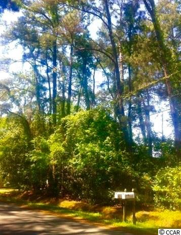 Additional photo for property listing at Lot 9 Vista Drive Lot 9 Vista Drive Garden City Beach, South Carolina 29576 United States