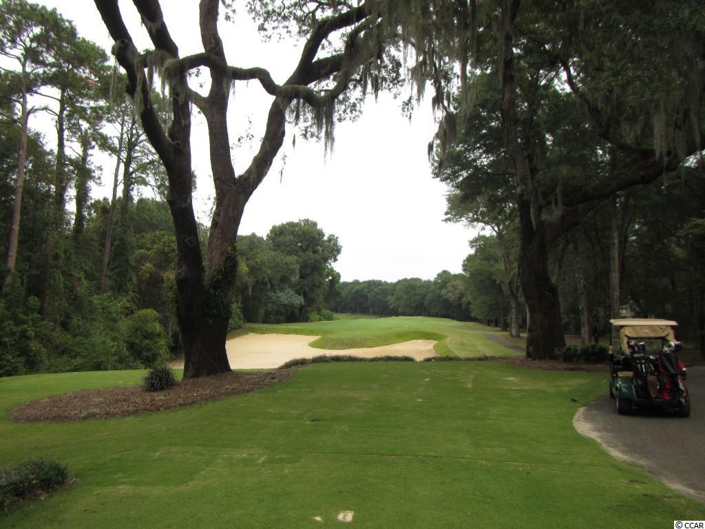 Additional photo for property listing at 4454 RICHMOND HILL Drive 4454 RICHMOND HILL Drive Murrells Inlet, South Carolina 29576 United States