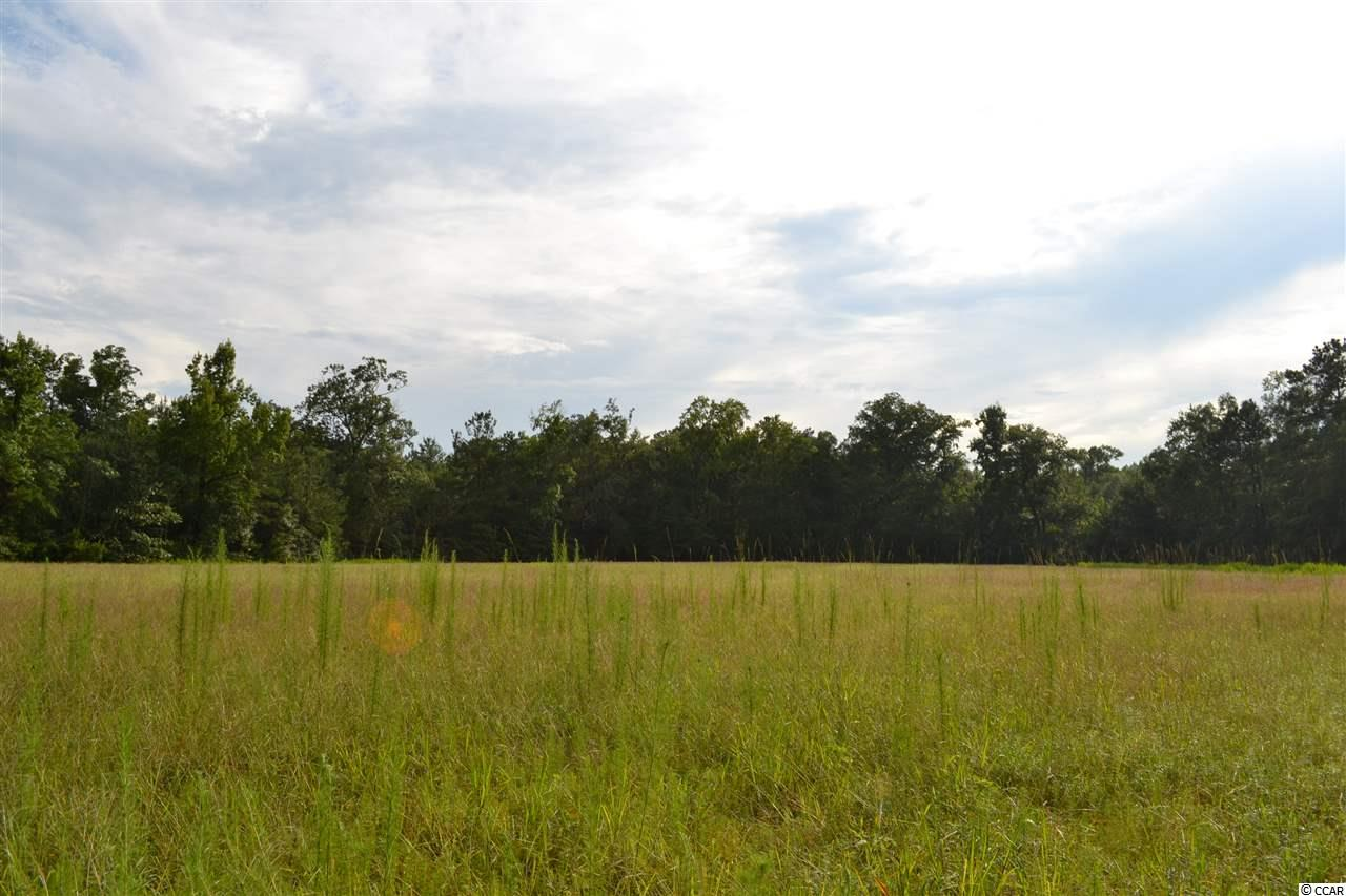 Additional photo for property listing at Old Reaves Ferry and Grahamville Old Reaves Ferry and Grahamville Conway, South Carolina 29526 United States