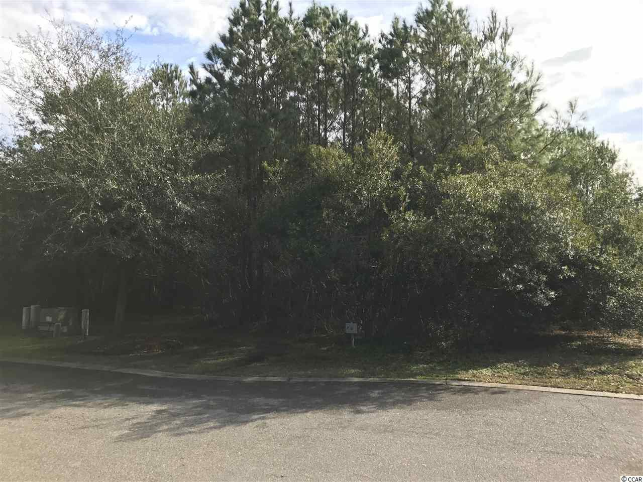 Land for Sale at Lot 06 Permit Court Lot 06 Permit Court Georgetown, South Carolina 29440 United States