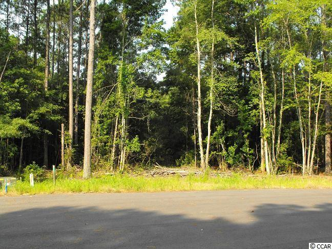 Land for Sale at Lot 489 Wedgefield Plantation Lot 489 Wedgefield Plantation Georgetown, South Carolina 29440 United States