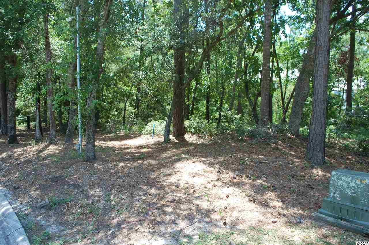 Land for Sale at LOT 42 NATURES VIEW CIRCLE LOT 42 NATURES VIEW CIRCLE Pawleys Island, South Carolina 29585 United States