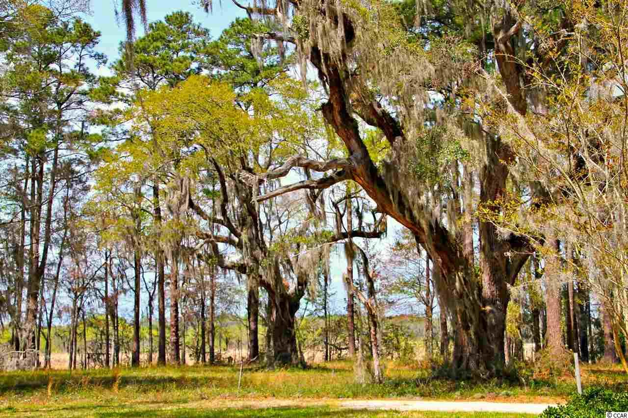 Land for Sale at Lot A Tuckers Road Lot A Tuckers Road Pawleys Island, South Carolina 29585 United States
