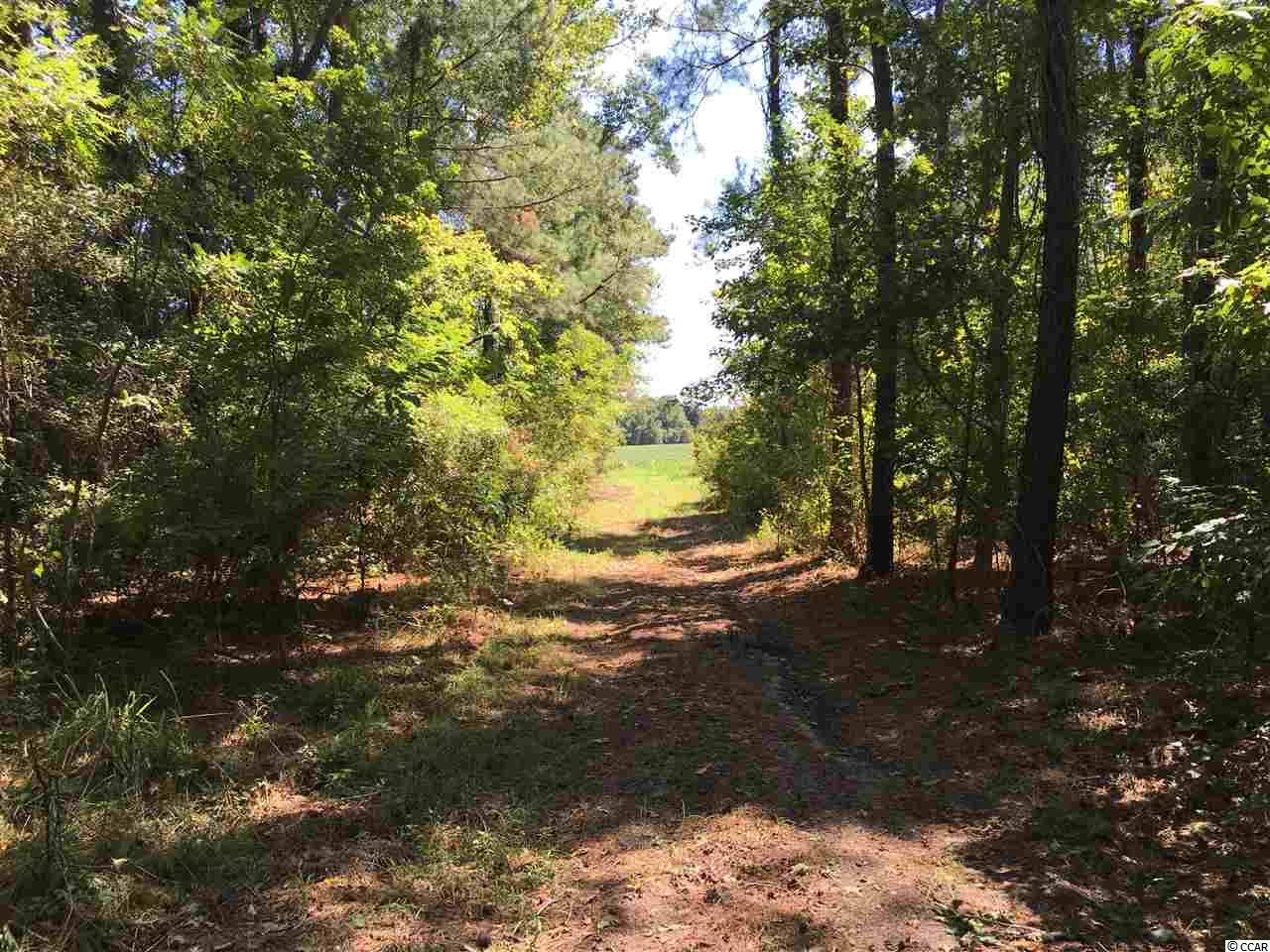 1993 Muddy Creek Road, Hemingway, SC 29554
