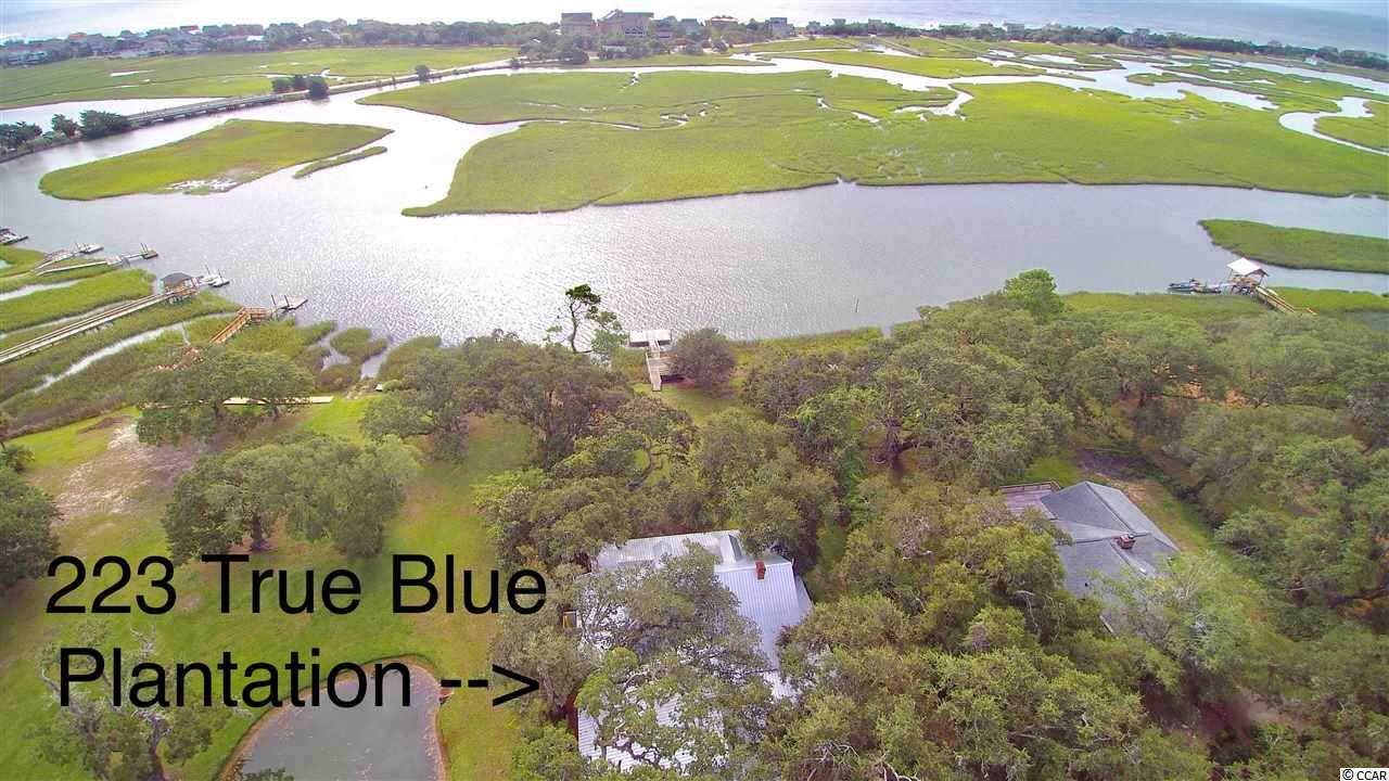 223 True Blue Drive, Pawleys Island, SC 29585