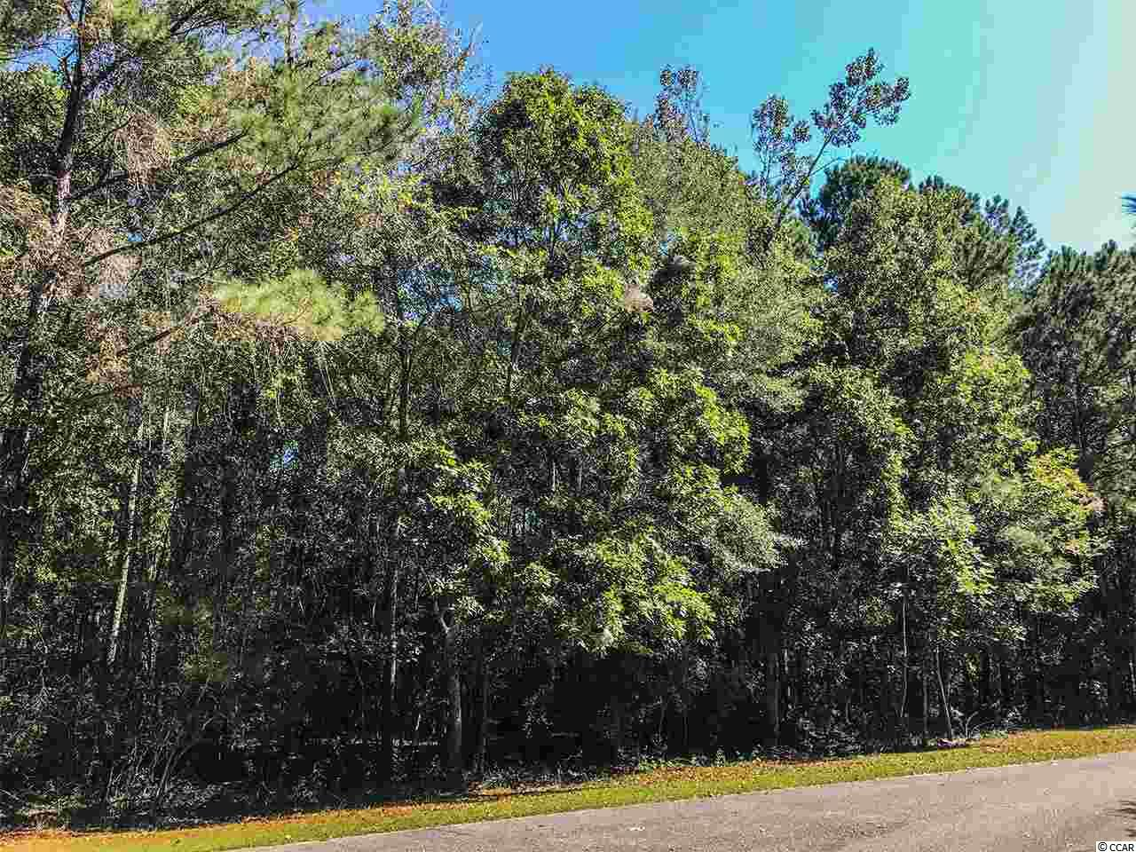Lot 47 Tipperary Place, Pawleys Island, SC 29585
