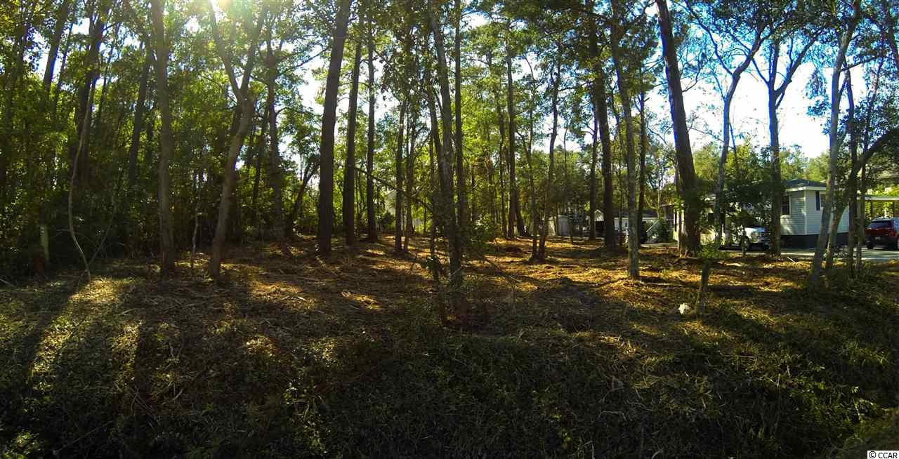 Lot 12 Blk D Pine Ave, Garden City Beach, SC 29576