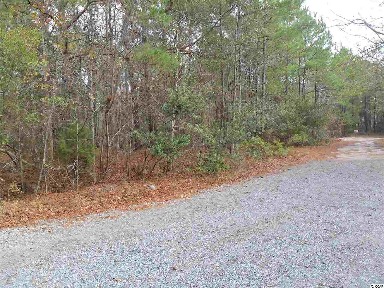 Additional photo for property listing at TBD GERTRUDE DRIVE LOT 1 TBD GERTRUDE DRIVE LOT 1 Pawleys Island, South Carolina 29585 United States