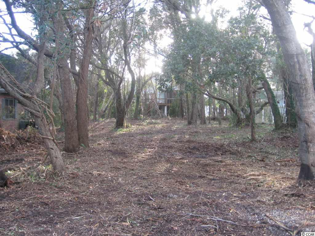 Additional photo for property listing at 38 Ancient Mariner Lane 38 Ancient Mariner Lane Pawleys Island, South Carolina 29585 United States