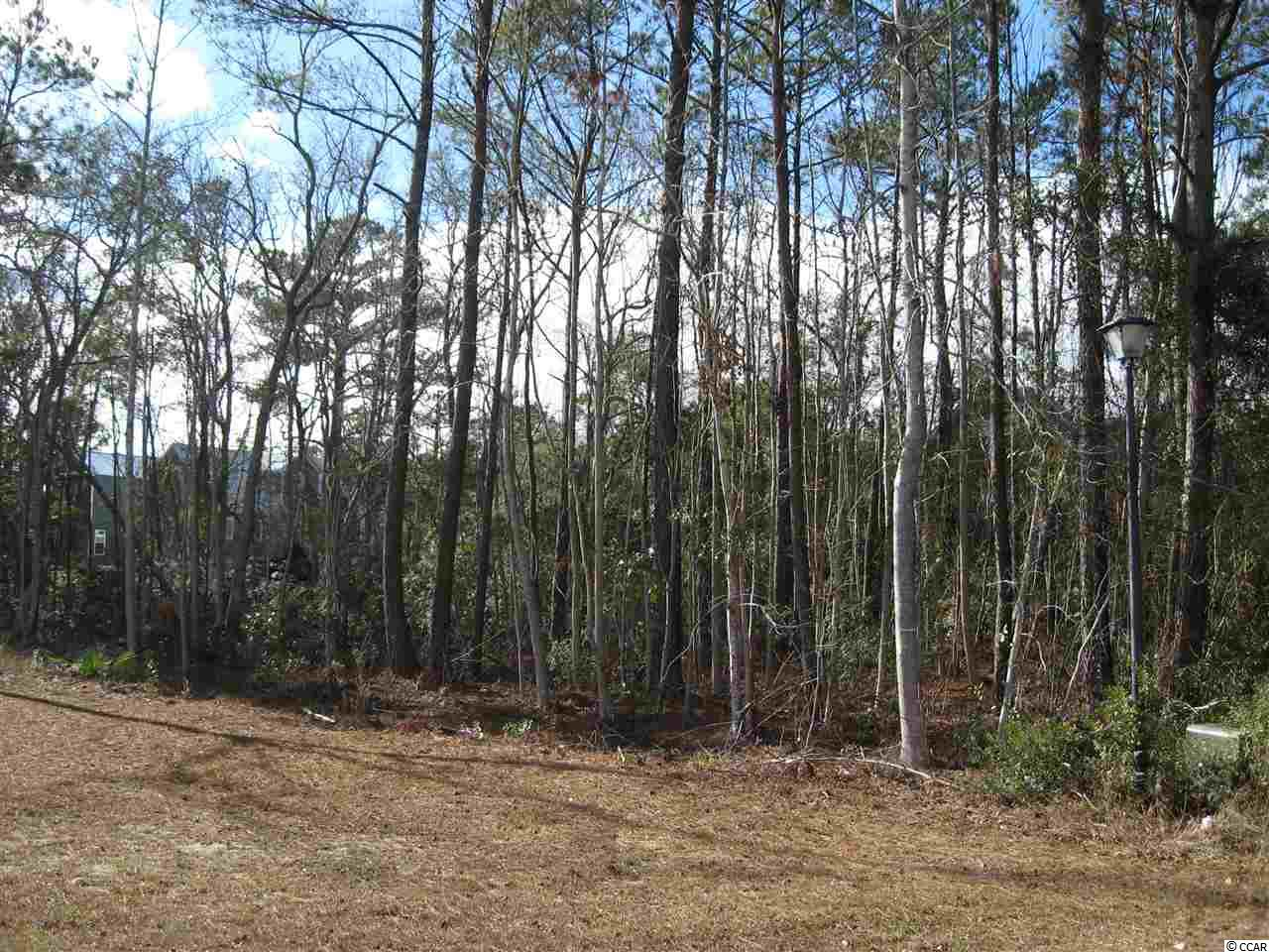 Land for Sale at Lot 145 Trace Drive Lot 145 Trace Drive Pawleys Island, South Carolina 29585 United States