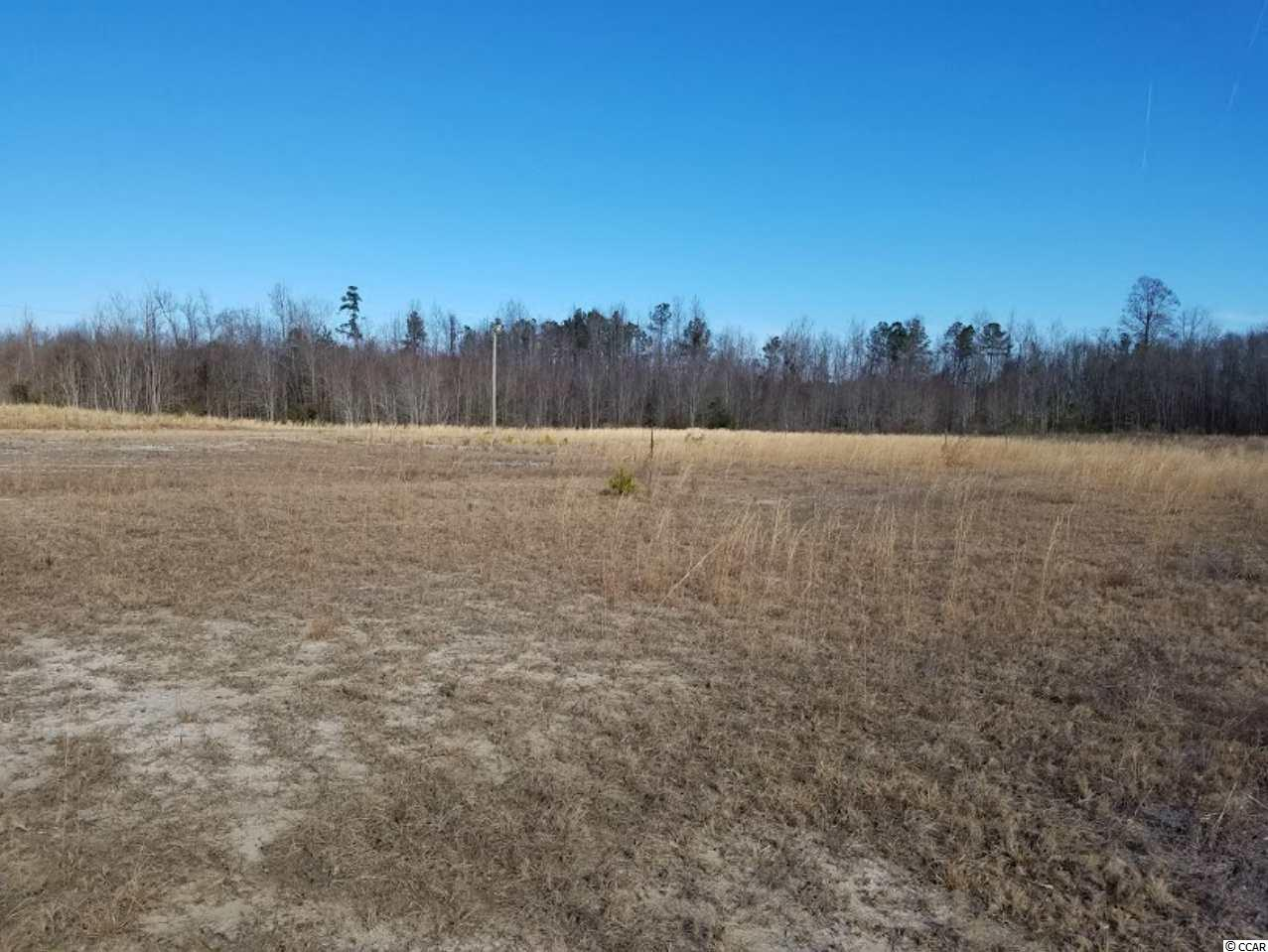 Acreage for Sale at TBD Hwy 9 Bypass TBD Hwy 9 Bypass Loris, South Carolina 29569 United States