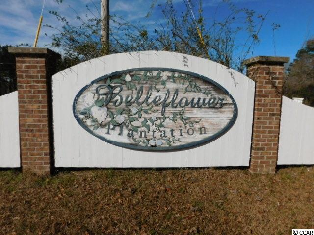 Acreage for Sale at Lot 1 Bellflower Way Lot 1 Bellflower Way Georgetown, South Carolina 29440 United States