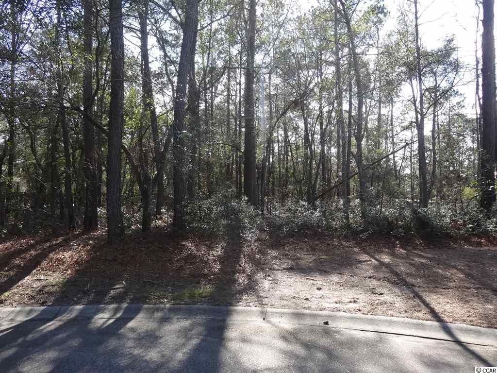 Land for Sale at Lot 108 Waterville Lane Lot 108 Waterville Lane Pawleys Island, South Carolina 29585 United States