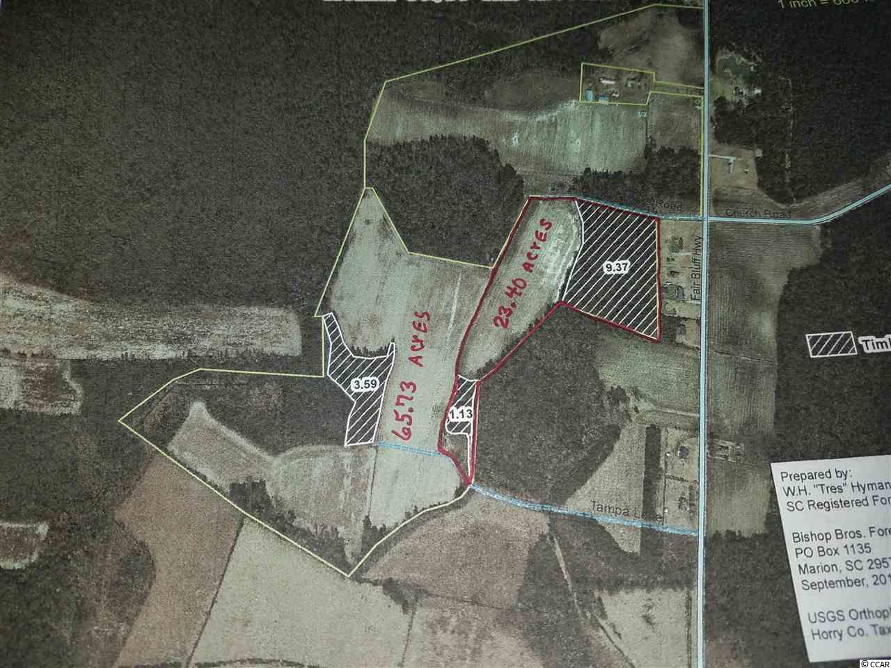 Farm for Sale at Highway 33 Green Sea Floyds Highway 33 Green Sea Floyds Green Sea, South Carolina 29545 United States