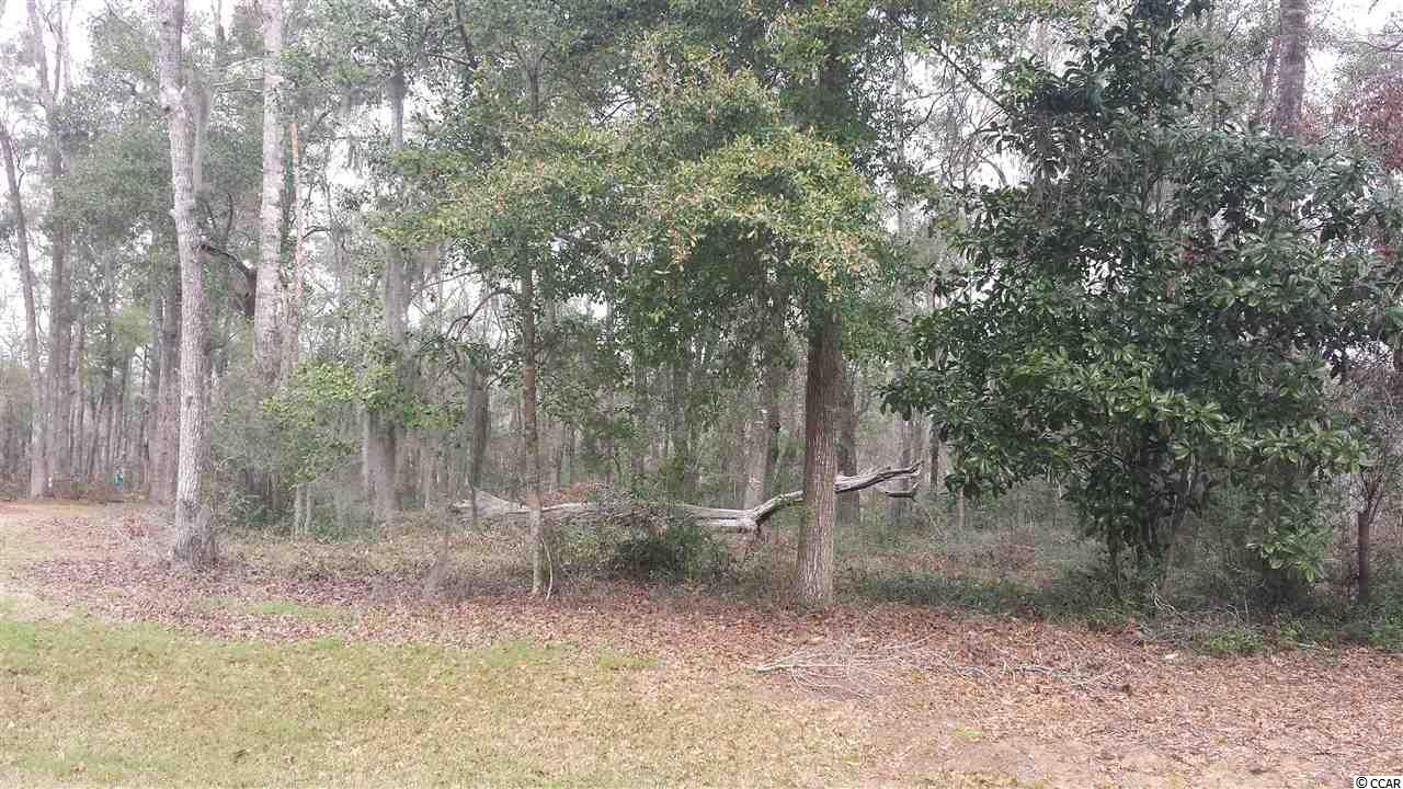 Land for Sale at 86 Percival Court 86 Percival Court Pawleys Island, South Carolina 29585 United States