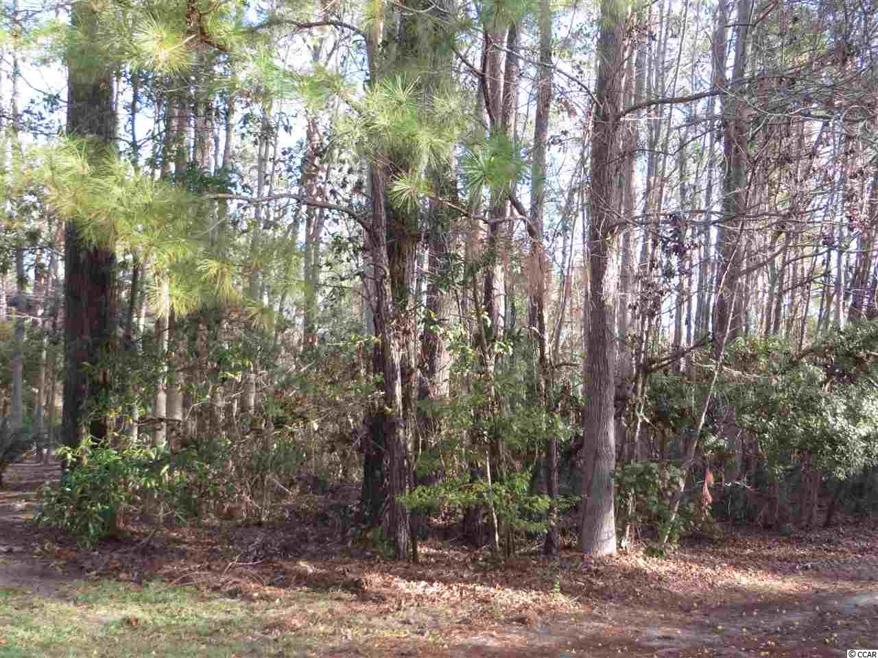 LOT 273 CLANCURRY PL, Pawleys Island, SC 29585