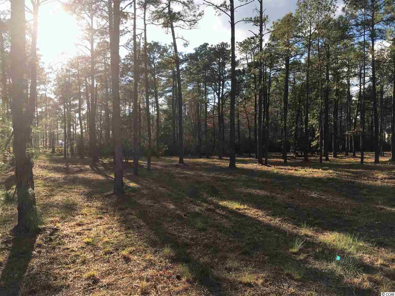 Lot 67 Waterbridge, Myrtle Beach, SC 29579