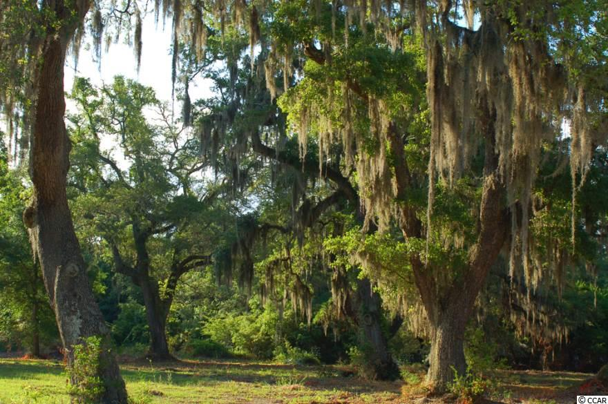 This property available at the  1 in Pawleys Island – Real Estate