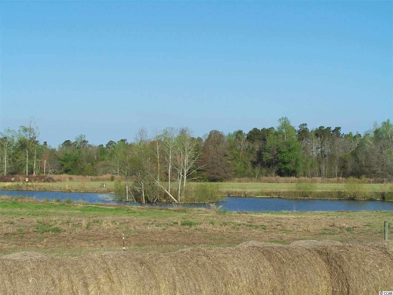 Acreage for Sale at 9100 Quarter Horse Drive 9100 Quarter Horse Drive Nichols, South Carolina 29581 United States