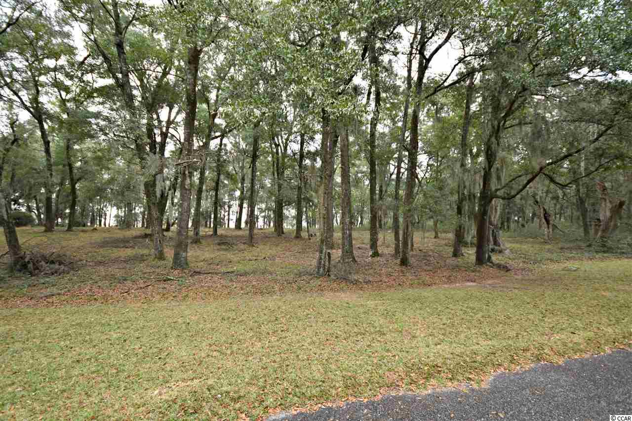 Additional photo for property listing at 125 Rice Bluff Road 125 Rice Bluff Road Pawleys Island, South Carolina 29585 United States