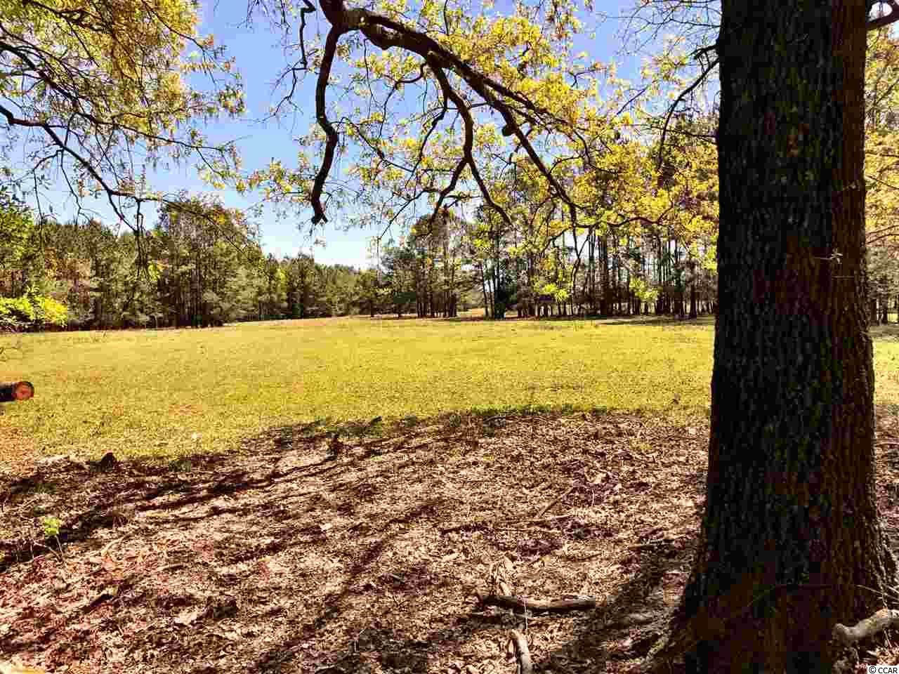 Additional photo for property listing at 6490 Pauley Swamp Road 6490 Pauley Swamp Road Conway, South Carolina 29527 United States